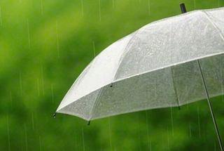 雨.jpeg