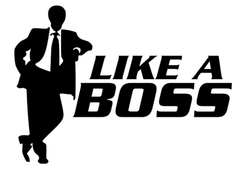 www_ehookcrook_com-like_a_boss_images_2015.png